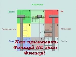 kak_primenyat_FS