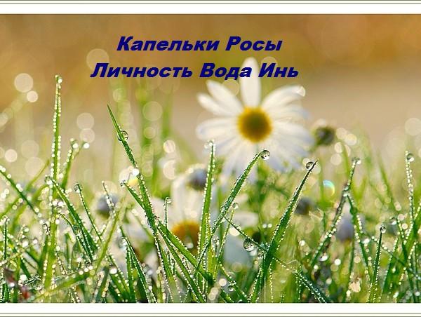 tayna_lichnosti_voda_in