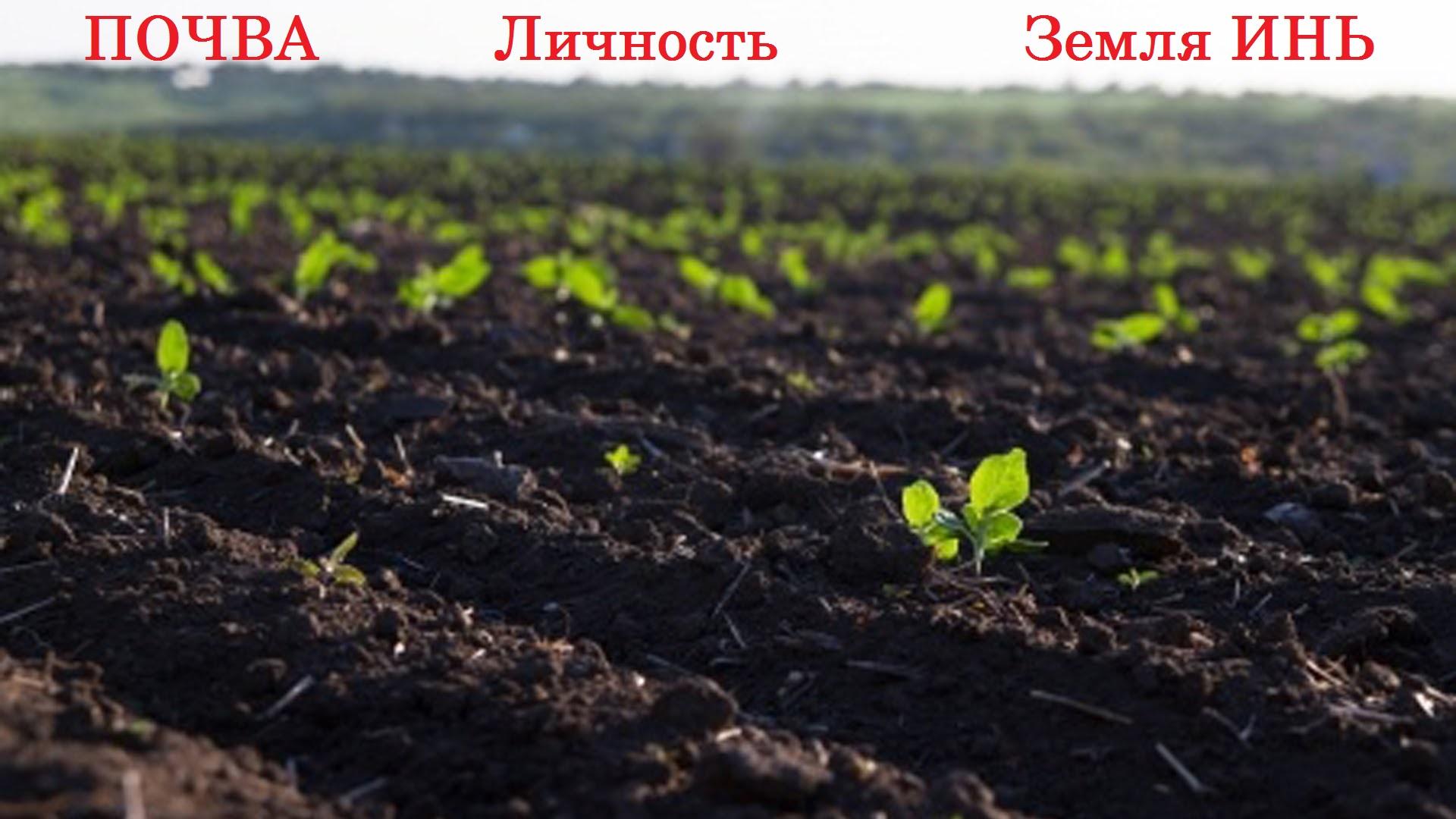 tayna_lichnosti_zemlya_in