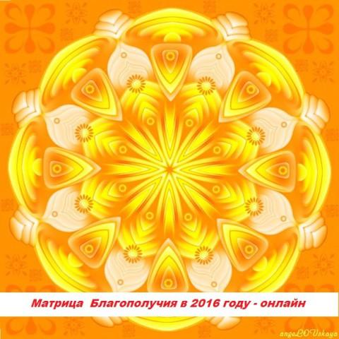 Матрица Благополучия в 2016 году - Юлия Полещук
