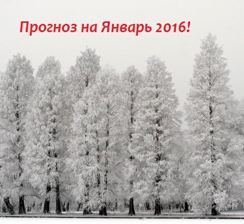 prognoz_na_yanvar