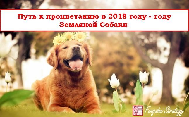 Путь к процветанию в 2018 году — году Земляной Собаки