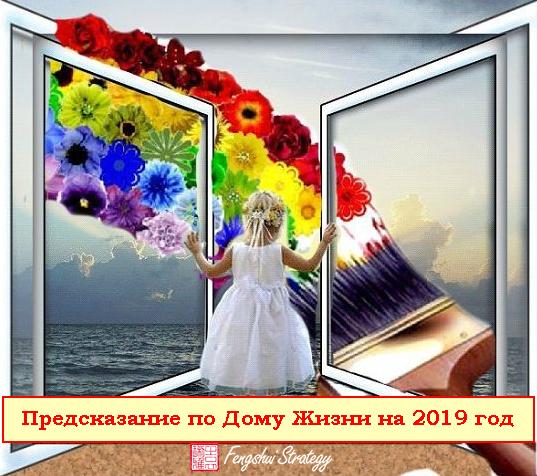 Предсказание по Дому Жизни на 2019 год