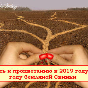Процветание 2019_1