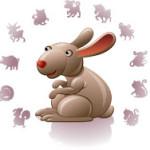 кролик_2019