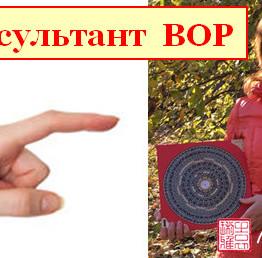 консультант фэншуй вор
