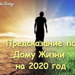 Дом Жизни в 2020 году