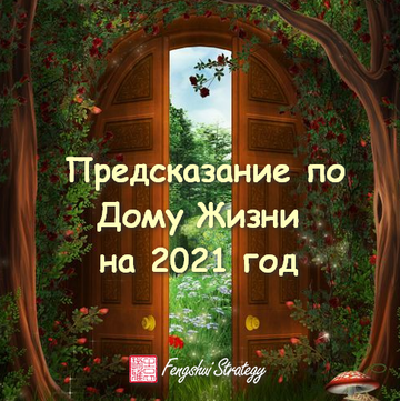Предсказание по Дому Жизни на 2021